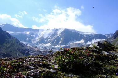 Pohled na pitztalské hory